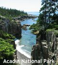 Acadia National Park Maine Button Short