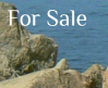 Anns Point Banner 3 For Sale Button