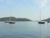 Early Summer on Somes Sound