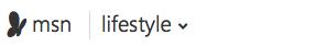 MSN Lifestyle Banner